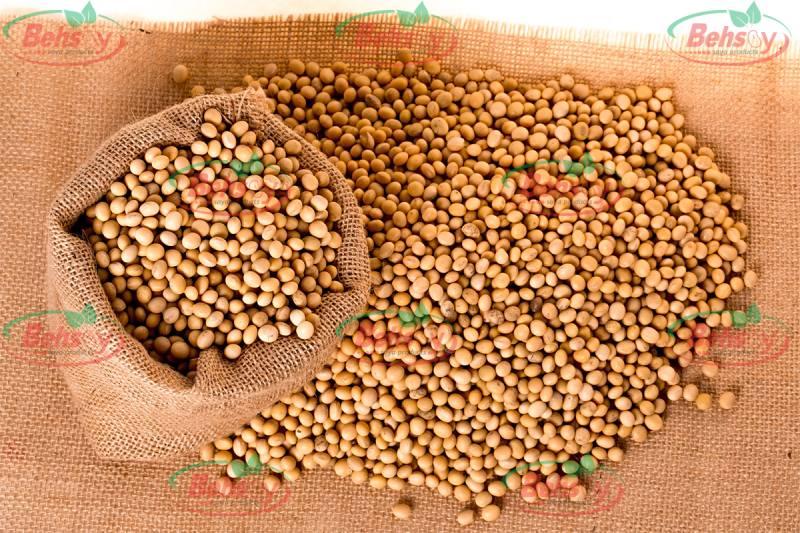 قیمت سویا خام و آجیلی در بازار کشور