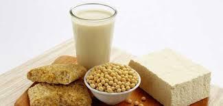 شیر سویا