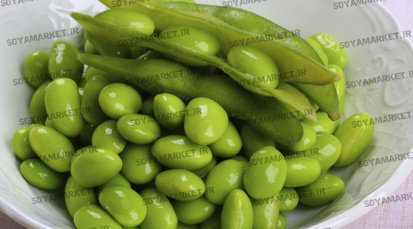 ویژگی ها و خصوصیات گیاه سویا
